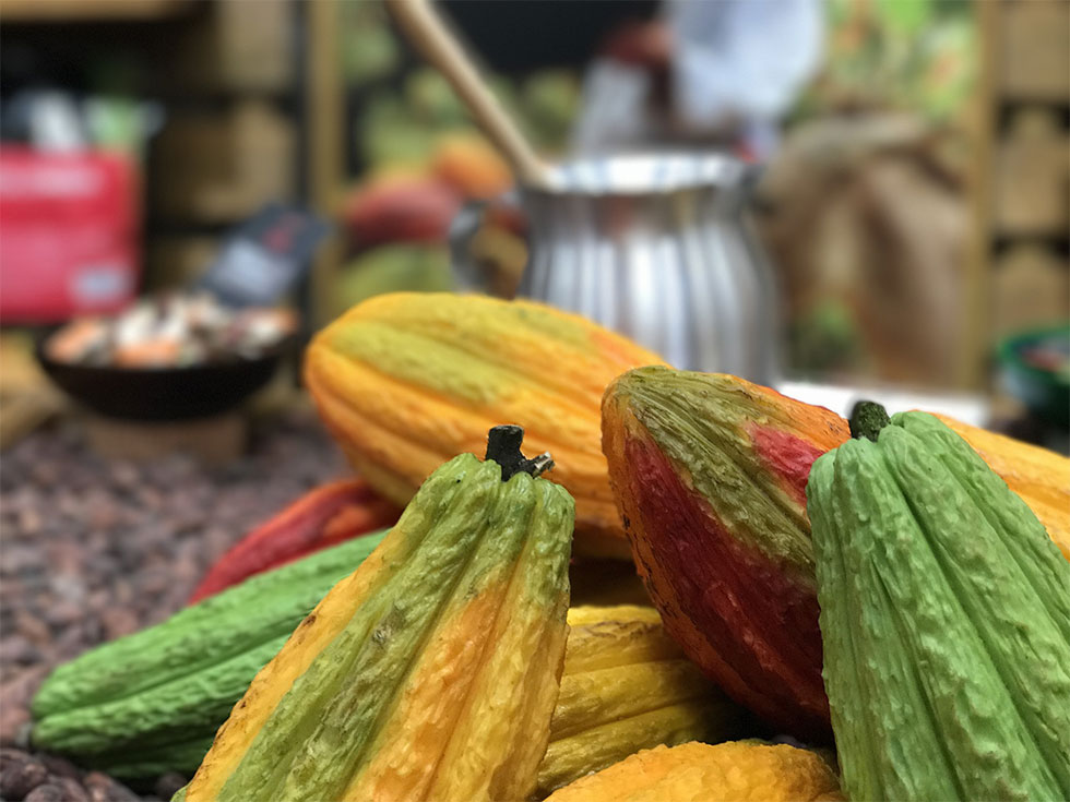Punta Gorda Cacao | Pride in traditional methods